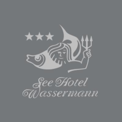 Referenz Kunde Kundenstimme Hotel Seehotel Hotel Wassermann- caesar data & software - Online-Buchungssystem, IBE, Homepage-Buchbarkeit, Web Design